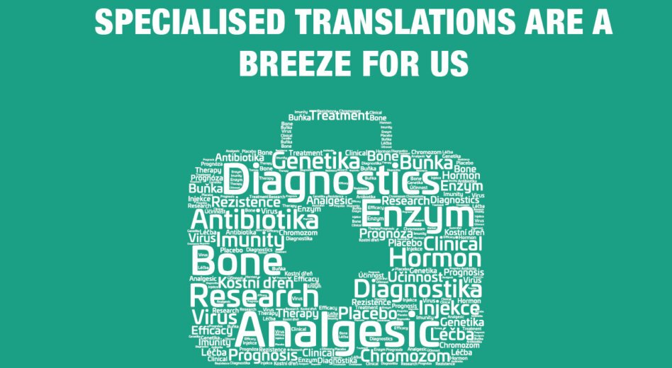 Why is the translator's specialization important?